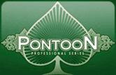 Игровой автомат Pontoon Pro Series бесплатно