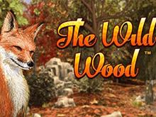 Игровой автомат The Wild Wood бесплатно
