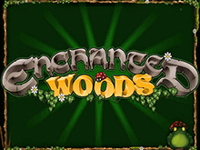 Enchanted Woods от Microgaming – слот для онлайн игры